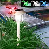 Solar Tuinlamp met Kolibri_