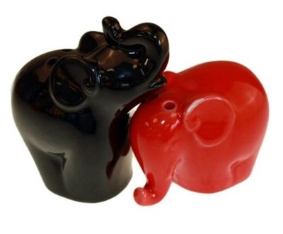 Peper en zout stel olifantjes